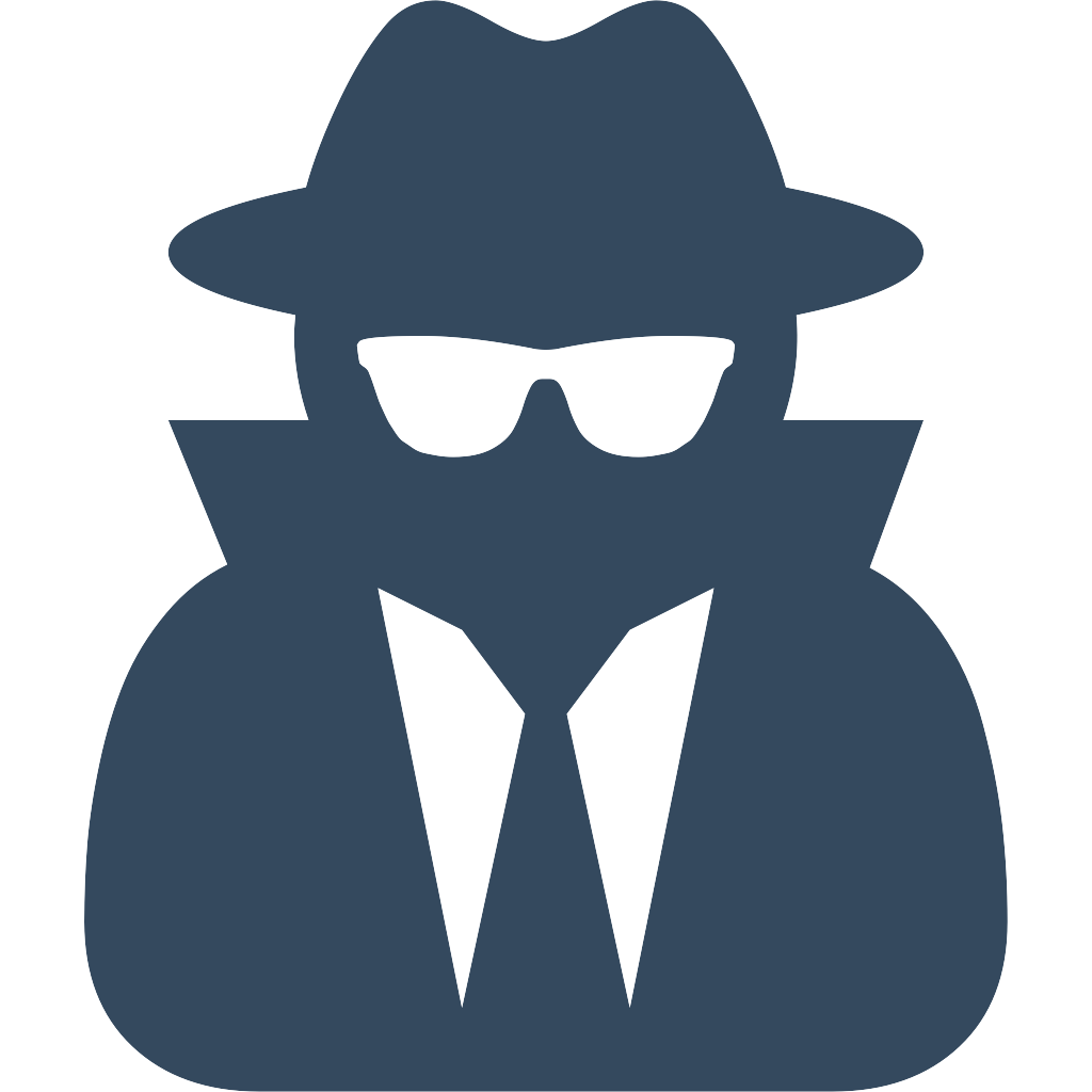 Large Privacy Icon